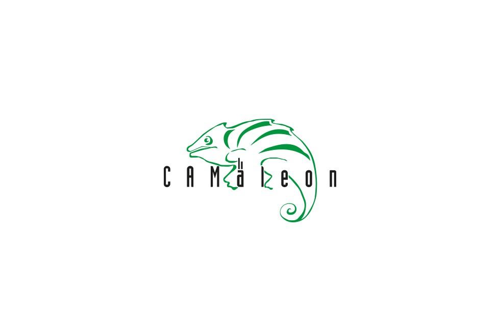 CAMäleon Produktionsautomatisierung GmbH